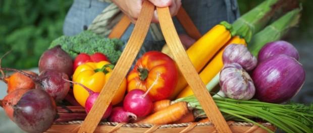 casi el 70% de los alimentos que se consumen proceden de otros países